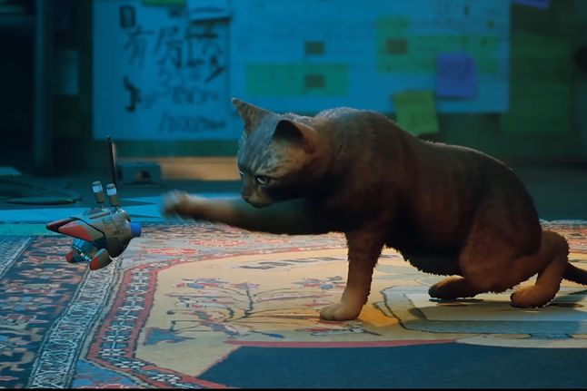 Stray to gra o kocie, i tyle mi wystarczy. W dodatku świetnie wygląda - Stray wyjdzie na konsole PlayStation 4 i 5 oraz PC