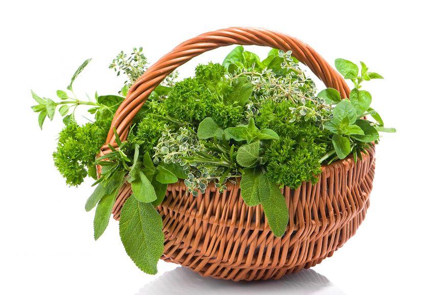 Mieszanki ziołowe wykazują bardzo skuteczne działanie przeciwgrzybicze