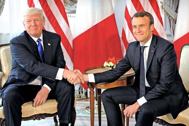 Francuski prezydent przywiózł Donaldowi Trumpowi upominek – sadzonkę dębu