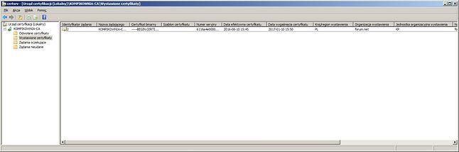 Oto, jak może wyglądać centrum certyfikacji (Windows Server 2008 R2)