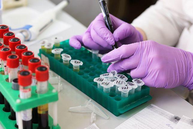 Laboratorium (zdjęcie ilustracyjne)