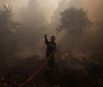 Pożary pustoszą Turcję. Są ofiary śmiertelne