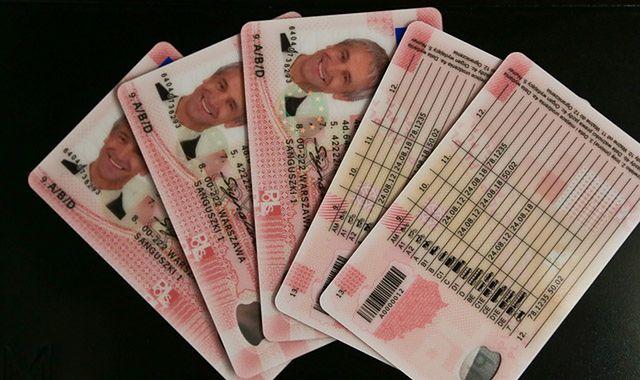 Oszuści oferowali prawo jazdy bez egzaminu