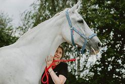 Bielsko-Biała. Suchy chleb dla konia? Nie! Makulatura! Zwierzęta będą miały lepszą opiekę