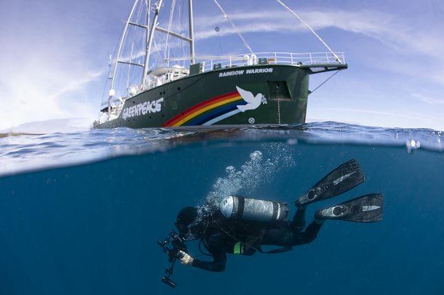 """Operacja Satanik. Francuskie siły specjalne zatapiają """"Rainbow Warrior"""", statek Greenpeace'u"""