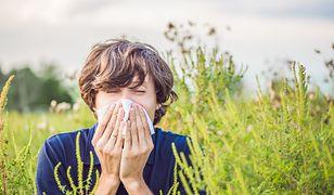 Alergicy też mogą cieszyć się wakacjami