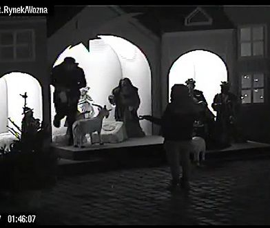 Próbowali ukraść Jezusa i koziołki z szopki bożonarodzeniowej na poznańskim rynku