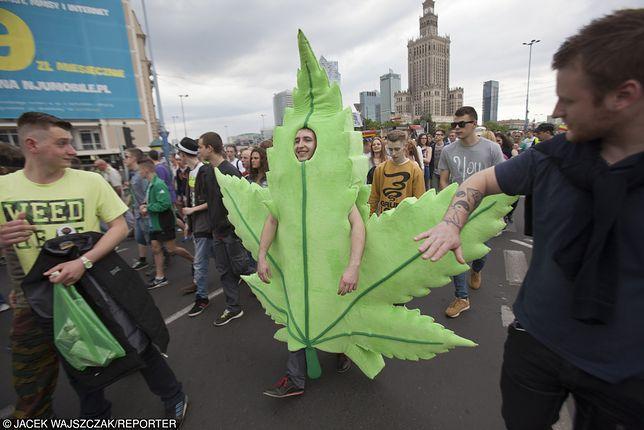 Szacuje się, że osób czekających na terapie marihuaną medyczną może być nawet około 300 tysięcy.