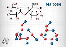 Maltaza - czym jest i jakie spełnia funkcje? Niedobory maltazy, czyli choroba Pompego