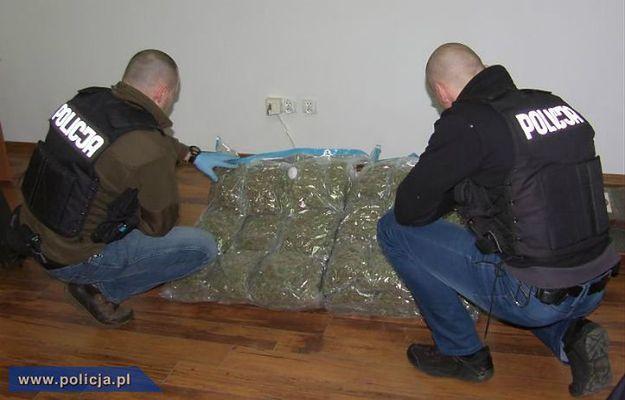 25 kg marihuany o wartości ponad miliona złotych przejęte przez policję