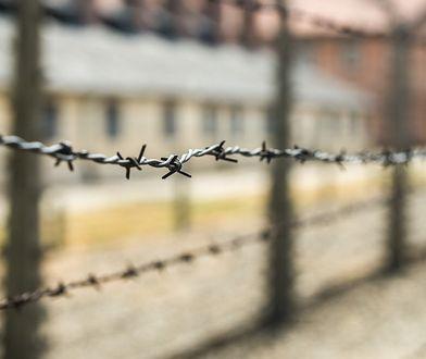 Swastyki na pomniku ofiar Holocaustu. Atak wandali w Grenoble