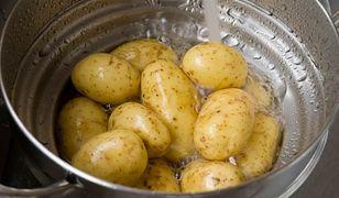 Kiedy ziemniak jest trujący?