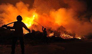 Straż pożarna notuje coraz więcej przypadków wypalania traw