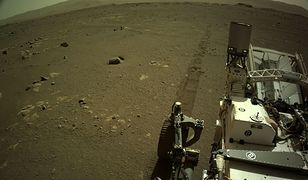 NASA: Łazik Perseverance rejestruje swoją pierwszą podróż na Marsie [Wideo]