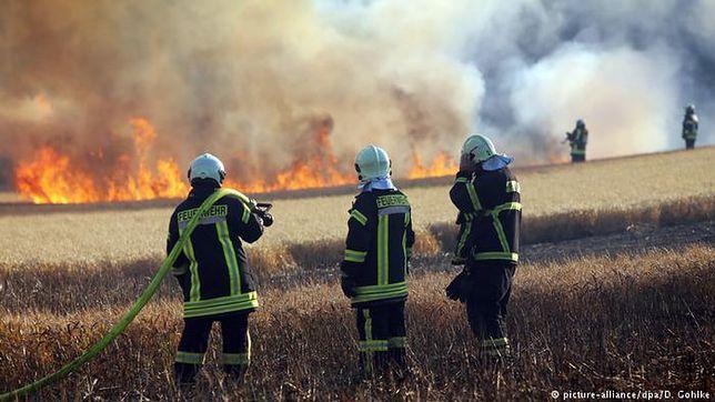 Płoną niemieckie pola i lasy. Pożary mogą zagrozić Polsce
