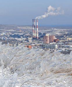 Władywostok skuty lodem. Rosyjskie miasto zostało sparaliżowane