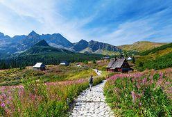 Tatry. Zamknięcie szlaków od 1 marca. Nie każdy zna ten przepis