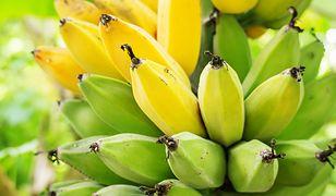 Kolor bananów wiele mówi o ich smaku i właściwościach