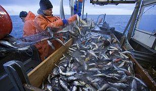 Rybacy zapowiedzieli protest ws. połowów dorsza