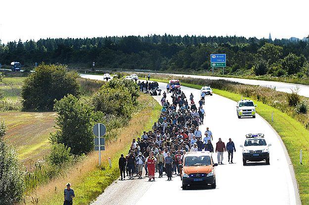 Czechy reagują na decyzję Niemiec o przywróceniu kontroli na granicach
