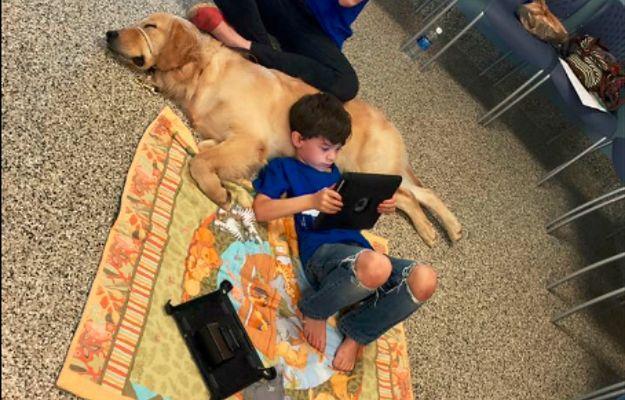Autystyczny chłopiec po raz pierwszy w życiu daje się dotknąć psu-terapeucie