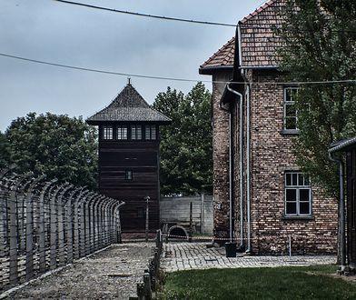 Oświęcim. Nietypowe znalezisko w Muzeum Auschwitz. Chodzi o dziecięce buciki