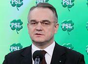 PSL proponuje unieważnienie umów na opcje walutowe