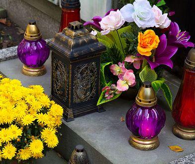 #ZielonyListopad. We Wszystkich Świętych zrezygnuj ze sztucznych kwiatów na cmentarzu