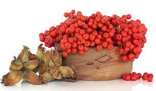 Jarzębina - jesienna dawka witaminy C