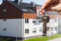 Dobry rok na rynku mieszkaniowym. Z kilku powodów