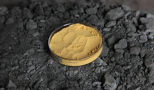 Uran z kopalni w Indiach.