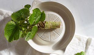 Wasabi jest kapryśne i delikatne, jego uprawa jest niezwykle trudna