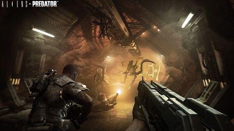 Aliens vs Predator - trailer i obrazek
