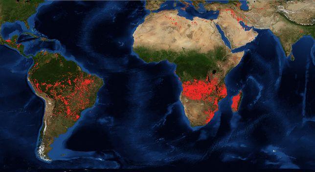 Pożary w Afryce i Ameryce Południowej. Zdjęcia satelitarne NASA