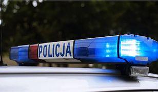 Brzoza Toruńska. Wypadek na DK 91, cztery osoby ranne