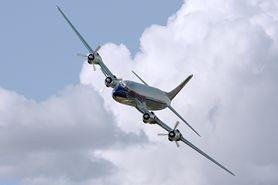 Czy w ciąży można podróżować w egzotyczne miejsca, latać samolotem, przechodzić przez skaner na lotnisku?