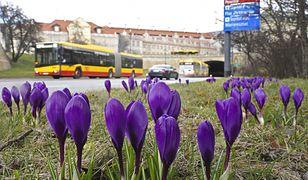 Pogoda w Warszawie w środę 21 kwietnia. Trochę słońca i kolejna burza