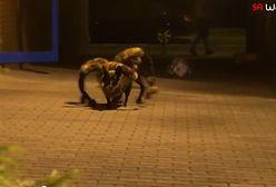 Wardęga straszy ludzi monstrualnym pająkiem (WIDEO)