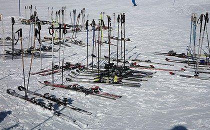 Śniegu jeszcze nie ma, ale wiele osób szuka już nart