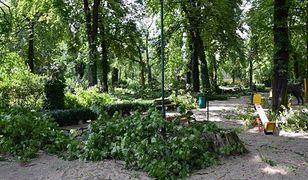 Sobotnia wichura połamała drzewa w Starym Zoo w Poznaniu. Ogród cały czas jest zamknięty