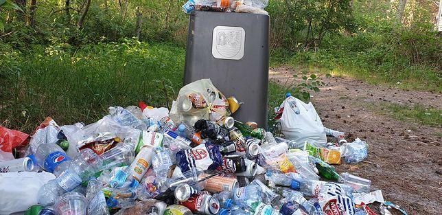Najwięcej można w lasach znaleźć butelek po napojach oraz puszek po piwie