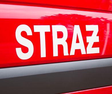 Ogień gasiło 11 zastępów straży pożarnej