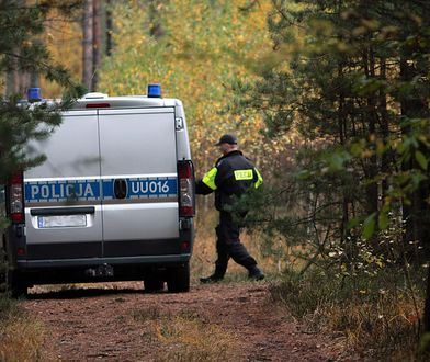 Puszcza Notecka. Policja poszukuje podejrzanego ws. dotyczącej zdarzenia, w którym mogło być wiele ofiar