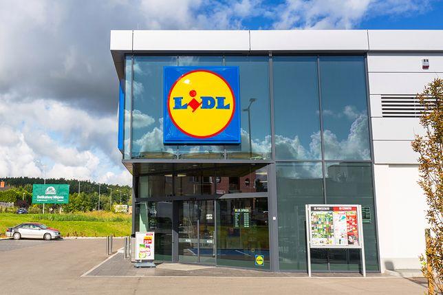 Lidl sprzedaje część zabawek drewnianych drożej w Polsce niż w Niemczech. Sieć tłumaczy