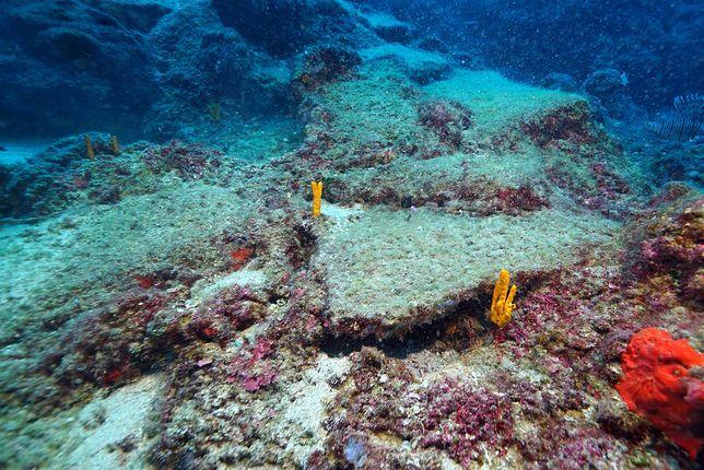 Może to być najstarszy wrak statku handlowego na świecie