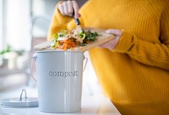 Czas na kompost. Jak wykorzystać zielone odpady w ogrodzie?