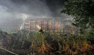 Prochowice. Tysiące kurczaków spłonęły żywcem