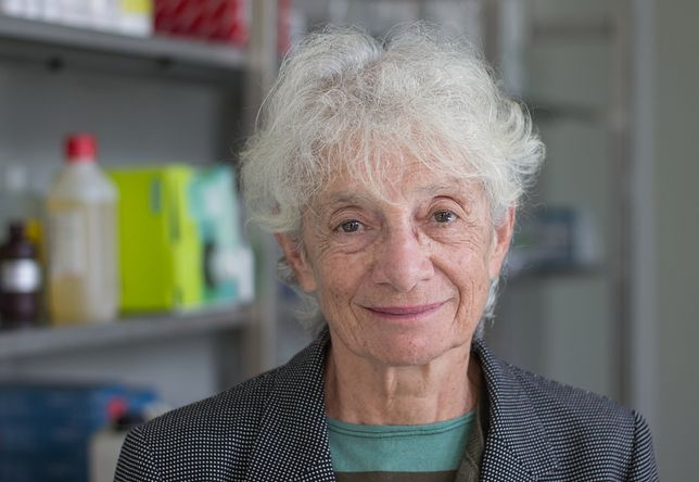 Profesor Eliane Gluckman