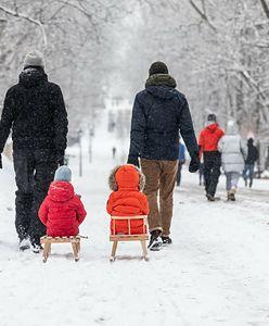 Śniegu w tym roku nie będzie? Ekspert z IMGW nie pozostawia złudzeń