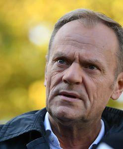 Sondaż WP. Opozycja nie wie, jak wygrać wybory? Ekspert o roli Tuska